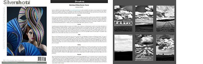 Silvershotz-web.jpg